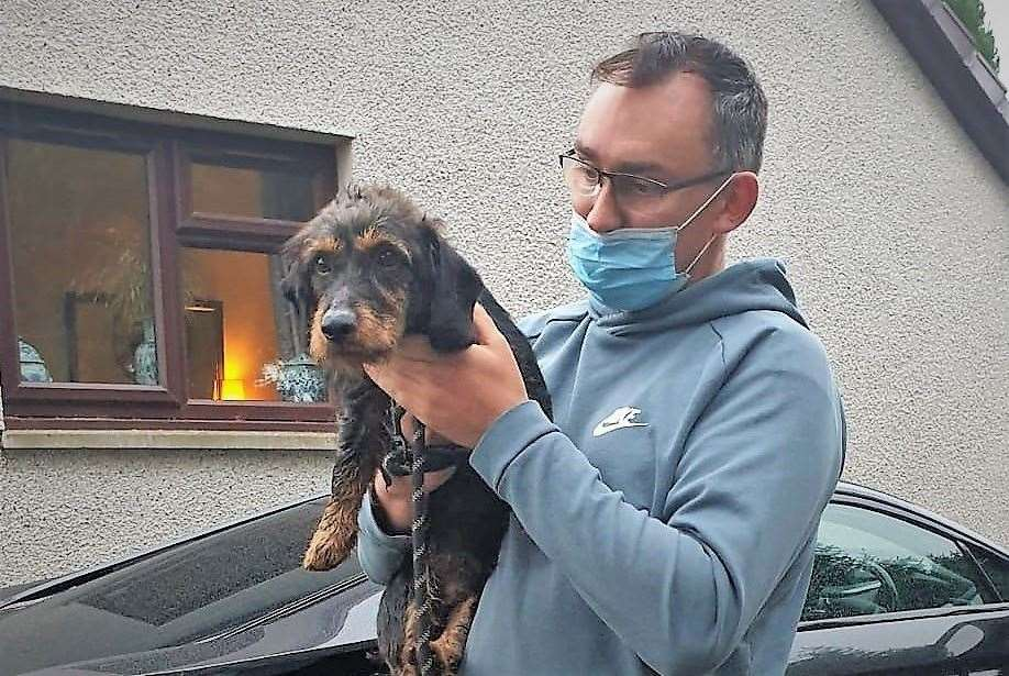 Arwel is reunited with wirehaired dachshund Llew after he went missing for a full week.